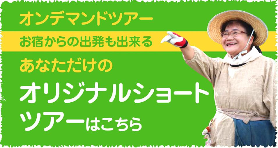 ショートショートプログラム 庄川温泉郷から出発するオンデマンドツアーはこちら
